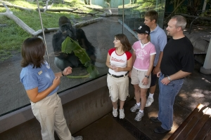 San Diego Zoo Vacation Packages