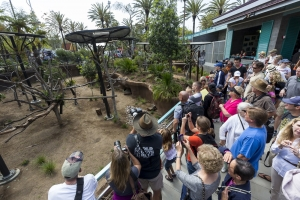 San Diego Zoo Discount