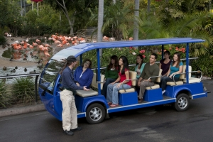 San Diego Zoo Packages