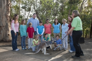 San Diego Zoo Tickets Online