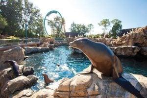 SeaWorld® Orlando Tickets