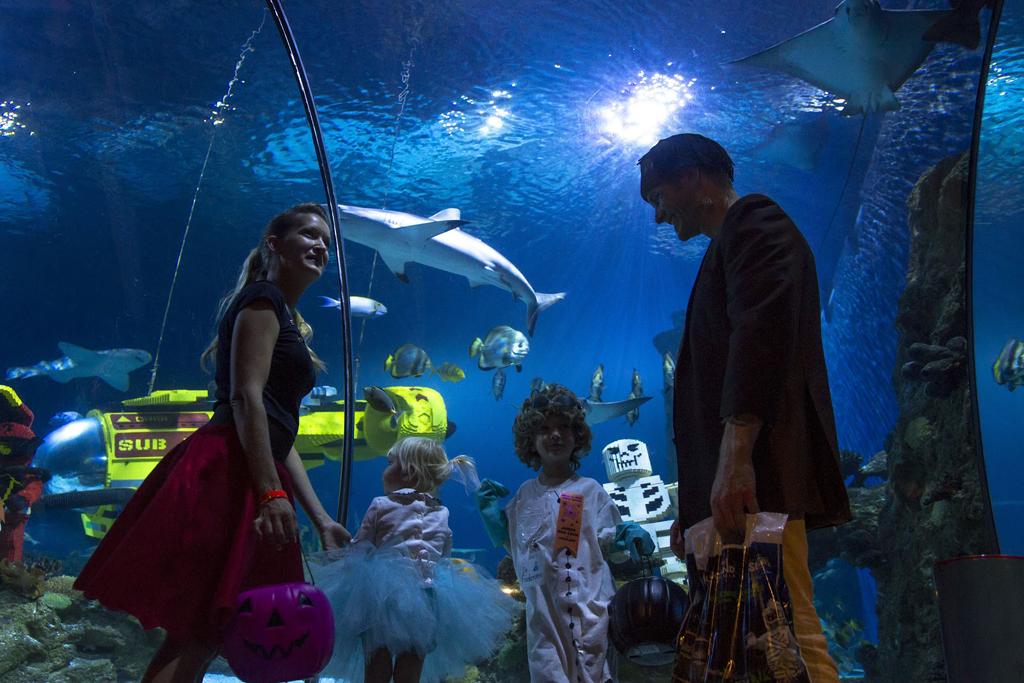 SEA LIFE® Aquarium