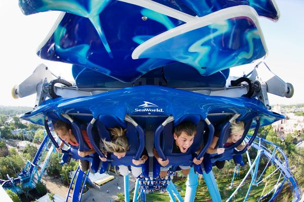 roller coaster'