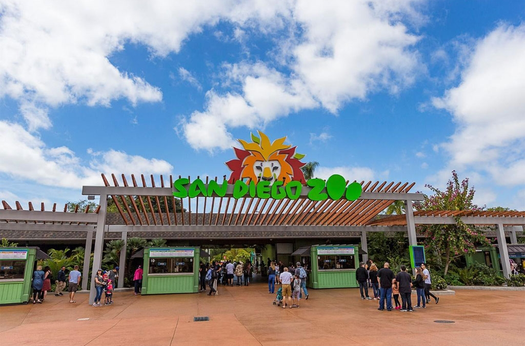 How to Make the Most Out of a Single Day Visit to the San Diego Zoo