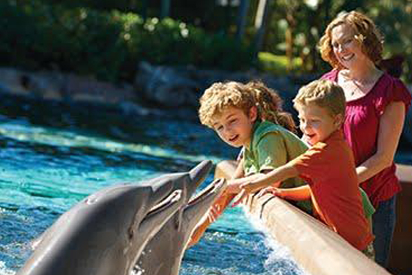 SeaWorld® and San Diego Zoo Discount Combo Tickets