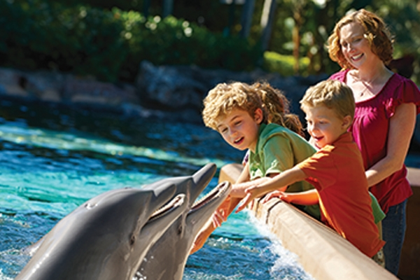 Experiences at Seaworld Orlando